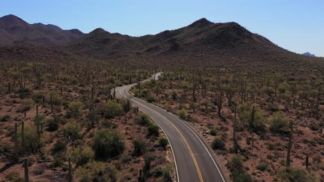 Aerial-of-a-motorcycle-on-a-desert-highway-road-with-Saguaro-cactus-all-around