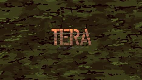 Animación-Texto-Día-De-Los-Veteranos-Sobre-Fondo-Militar-4