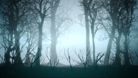 Mystical-horror-background-with-dark-blue-forest-and-fog-abstract-backdrop
