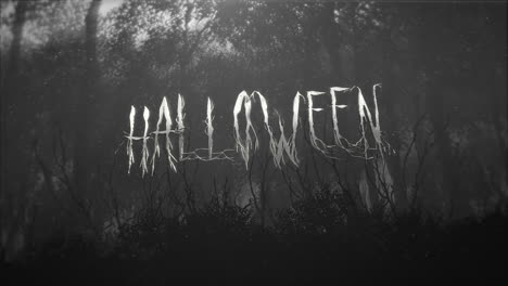 Animation-text-Halloween-and-mystical-background-with-dark-forest-and-fog