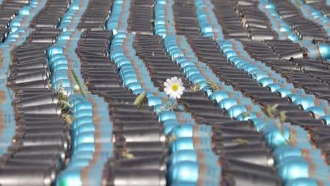Larga-Fila-De-Rondas-Explosivas-Con-Una-Flor-Sobresaliendo-Entre-Ellas-2010s