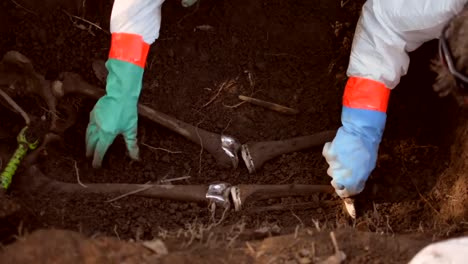 Fbi-Agents-Uncover-Human-Remains-During-their-Training-At-the-Forensic-Anthropology-Center-In-Knoxville-Tennessee-2019