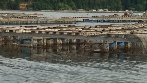 A-Floating-Aquaculture-Shellfish-Farm-In-the-Us-2010S