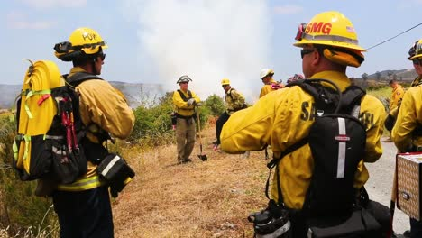 Firemen-Set-A-Controlled-Fire-In-A-Brush-Area