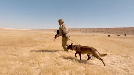 Us-Soldiers-2th-Infantry-Division-And-Military-Working-Dogs-Conduct-A-Team-Livefire-Exercise-At-Al-Asad-Air-Base-Iraq