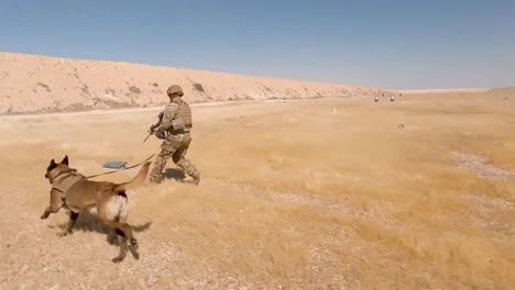 Us-Soldiers-2th-Infantry-Division-And-Military-Working-Dogs-Conduct-A-Team-Livefire-Exercise-At-Al-Asad-Air-Base-Iraq-1