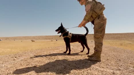 Us-Soldiers-2th-Infantry-Division-And-Military-Working-Dogs-Conduct-A-Team-Livefire-Exercise-At-Al-Asad-Air-Base-Iraq-6