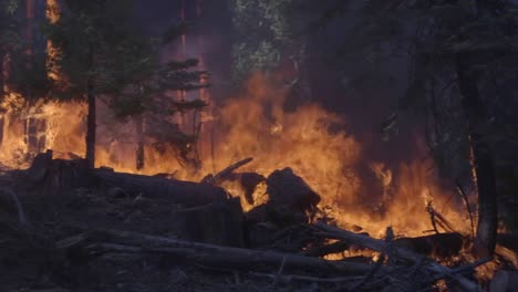 Scenes-From-the-Creek-Fire-An-Inferno-Of-Flames-And-Raging-Wildfires-In-the-Sierra-National-Forest