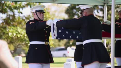 Us-Marines-In-Dress-Uniform-Lay-A-Fallen-Soldier-To-Rest-At-Arlington-National-Cemetery-Washington-4