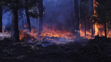 Us-Marines-And-Sailors-Conduct-Wildland-Firefighting-Operations-During-the-Creek-Fire-Sierra-National-Forest-Ca-6