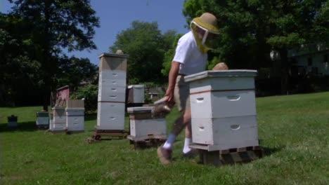 A-Beekeeper-Works-With-Bees-1