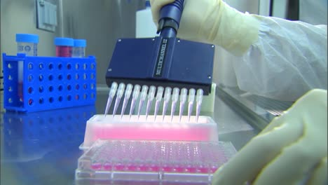 Cdc-Scientists-Work-In-A-Lab-To-Test-For-Avian-Bird-Flu