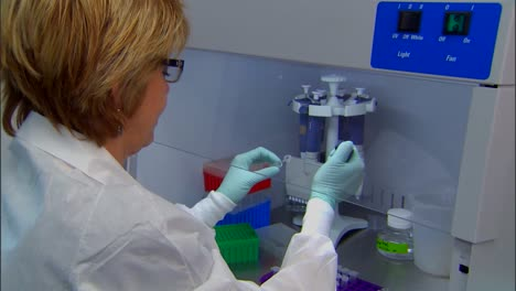 Cdc-Center-For-Disease-Control-Scientists-Work-In-Strains-Of-Viral-Meningitis-In-The-Lab