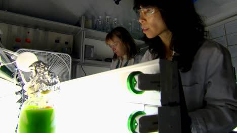 Las-Algas-Se-Desarrollan-Y-Utilizan-Como-Biocombustible-En-Condiciones-De-Poca-Luz-