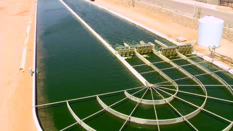 Una-Granja-Al-Aire-Libre-A-Gran-Escala-Cultiva-Algas-Para-Biocombustible