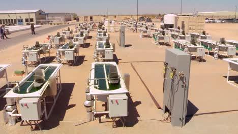 Una-Granja-De-Algas-Al-Aire-Libre-Desarrolla-Biocombustible-7
