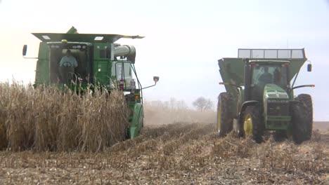 Los-Agricultores-Cosechan-Maíz-En-Los-Campos-De-Iowa
