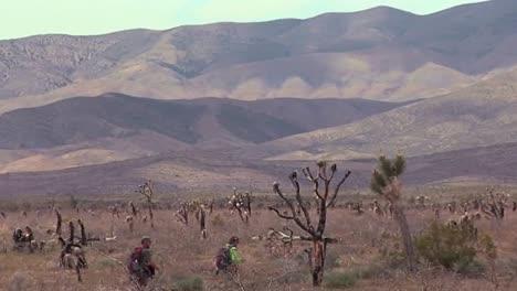 Investigadores-De-La-Usgs-Trabajan-Con-Tortugas-Del-Desierto-En-Peligro-De-Extinción