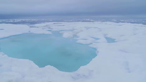 A-Pan-Across-Sea-Ice-Reveals-Walrus-In-The-Distance