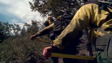 Fire-Crews-Mop-Up-After-A-Forest-Fire-6