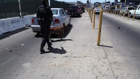 A-Canine-Unit-Patrols-Cars-Along-The-San-Ysidro-Border-Crossing-Between-The-Us-And-Mexico
