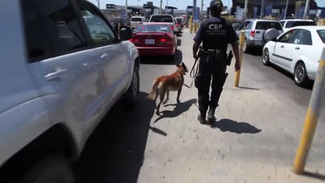 A-Canine-Unit-Patrols-Cars-Along-The-San-Ysidro-Border-Crossing-Between-The-Us-And-Mexico-2