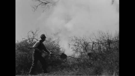 66-People-Burn-To-Death-From-A-Forest-Fire-In-Los-Angeles-In-1933