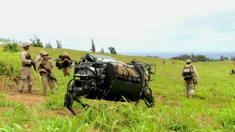 The-Legged-Squad-Support-System-Robotic-Mule-Is-Demonstrated-By-The-Us-Army-1