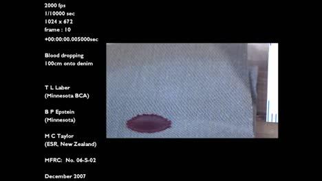 A-Forensics-Crime-Lab-Studies-A-Slow-Motion-Blood-Drop-Falling-Onto-Denim-Jeans