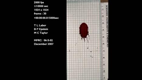 A-Forensics-Crime-Lab-Studies-A-Slow-Motion-Blood-Drop-Falling