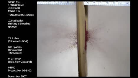 A-Forensics-Crime-Lab-Studies-An-Extreme-Slow-Motion-Bullet-Poassing-Through-A-Blood-Spattered-Sponge
