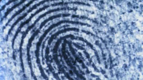 Inside-The-Fbis-Iafis-Fingerprint-Identification-Laboratory
