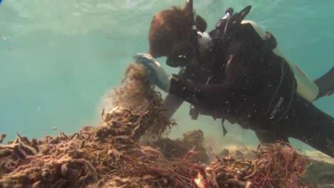 Los-Buzos-Trabajan-Para-Quitar-Las-Redes-De-Pesca-Enredadas-De-Los-Arrecifes-De-Coral-Cerca-De-Hawai