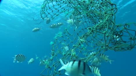Underwater-View-Of-A-Broken-Net-Which-Could-Ensnare-And-Trap-Marine-Animals-1