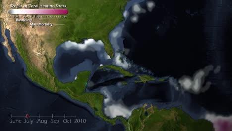 Eine-Animierte-Visualisierung-Der-Zerstörung-Von-Korallenriffen-Durch-Die-Globale-Erwärmung-In-Der-Karibik