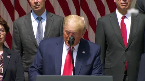Us-President-Donald-Trump-Press-Statement-Regarding-Black-Lives-Matter-Protests-Says-George-Floyd-Is-Looking-Down-Saying-What-A-Great-Day-It-Is-For-Our-Country