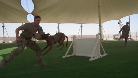 Military-Working-Dogs-And-their-Handlers-Work-Out-And-Conduct-Training-Exercises-At-the-Al-Udeid-Air-Base-Qatar-2