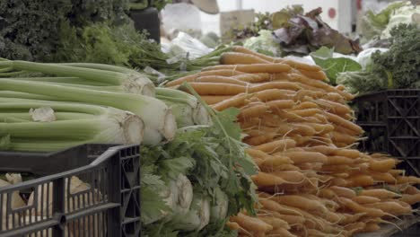 Fresh-organic-farm-produce-greens-and-vegetables-for-sale-at-the-weekly-Santa-Barbara-Farmers-Market-California