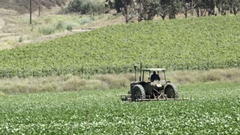 Un-Tractor-Trabaja-En-Un-Campo-De-Frijoles-Y-Un-Sistema-De-Riego-Rocía-Agua-En-Un-Huerto-De-Aguacates-En-El-Valle-De-Lompoc-California
