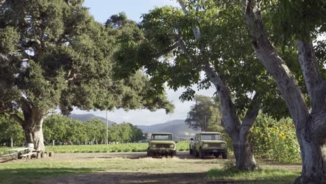 Dolly-shot-of-two-old-international-scout-vehicles-parked-on-a-ranch-in-the-Lompoc-Valley-California