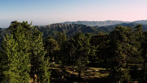 Beautiful-aerial-over-the-Pine-Mountain-wilderness-and-trees-slated-to-be-logged-and-habitat-removed-2