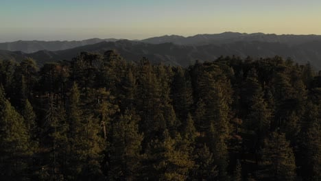 Beautiful-aerial-over-the-Pine-Mountain-wilderness-and-trees-slated-to-be-logged-and-habitat-removed-7