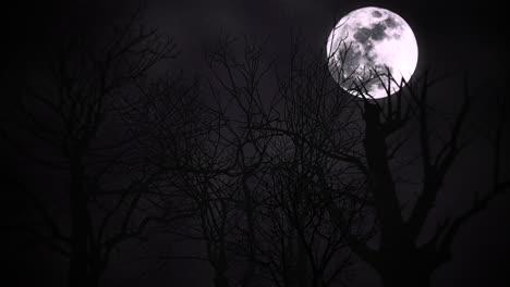 Mystischer-Animations-Halloween-Hintergrund-Mit-Dunklem-Mond-und-Abstraktem-Hintergrund-Der-Wolken