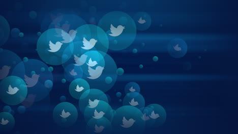 Iconos-De-Movimiento-De-Animación-De-La-Red-Social-Twitter-Sobre-Fondo-Simple