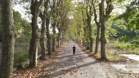 Autumn-Park-Sport-Running-2