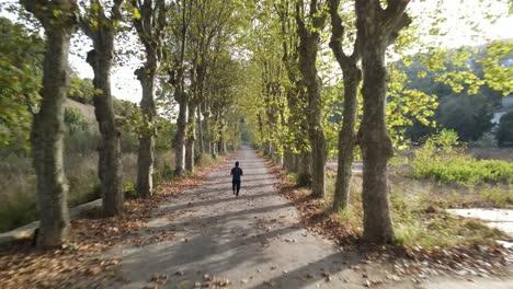 Autumn-Park-Sport-Running