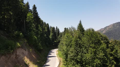 Car-Going-Slowly-In-A-Road-Between-Nature