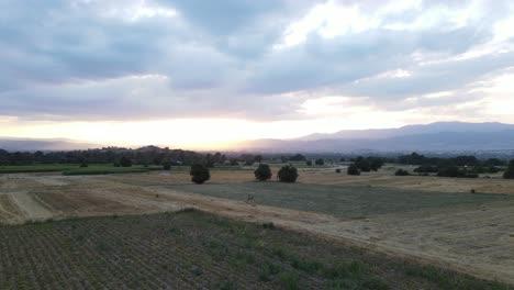 Aerial-Drone-Village