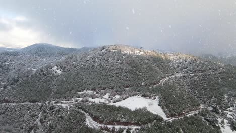 Winter-Forest-Mountains-Snow-Aerial-Drone