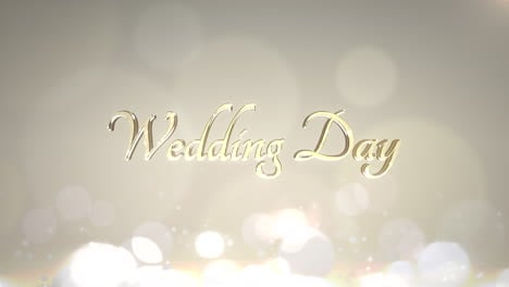 Closeup-text-Wedding-Day-and-motion-white-and-gold-circles